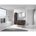 Victoria Basic 800mm UNIK Wenge & Ceramic Basin EX DISPLAY OFFER