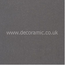 BCT21407 Stipple Dark Grey Polished Porcelain Floor 300mm x 600mm