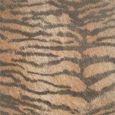 Original Style Tileworks Cavallino Tiger 45x45cm CS585-4545 decorative tile